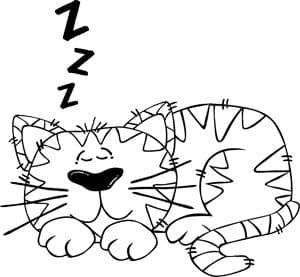 Stoppen met snurken